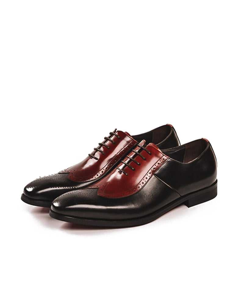 Leather Oxford Shoes - Wayne [Spectator Coffee Brown]