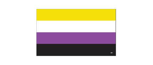 Non Binary Pride 3x5 inch Bumper Sticker