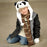 Panda Hat - Original Source