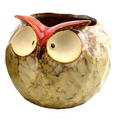 Wide Eyed Owl Bowl – Small