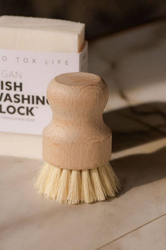 Casa Agave Dishwashing & Vegetable Hand Brush