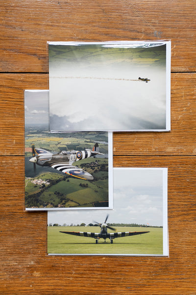 The Wings Collection Cards (pack of 3)