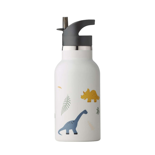 Anker Water Bottle Dino Mix