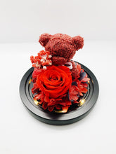 Load image into Gallery viewer, Limited Edition Rose Dome With Bear With Light