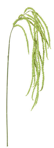 Amaranthus Spray