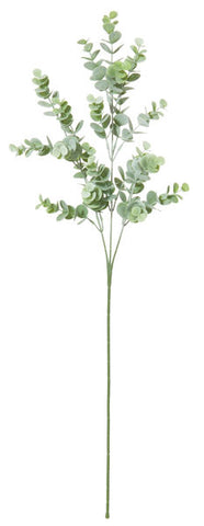 Eucalyptus Spray Stem - Green