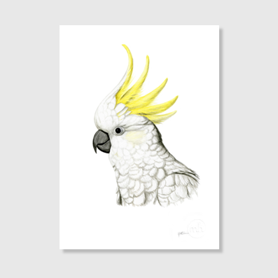 Cockatoo Art Print - A4
