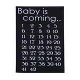 Pregnancy Tees Stickers Creative Clothes Fabric Patches Baby is Coming Baby Birth Countdown 42 Weeks Cloth Accessories