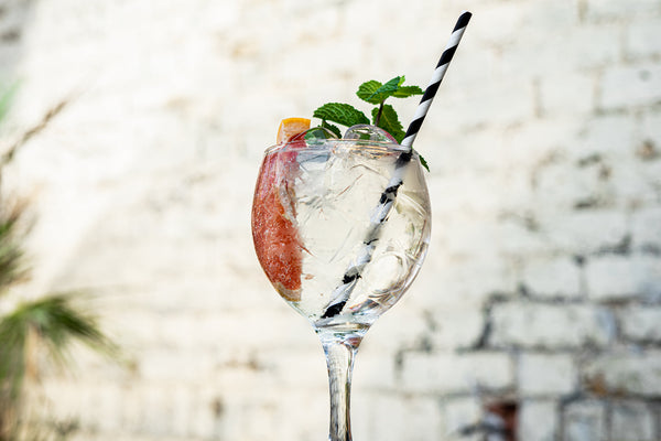 gin and tonic with pink grapefruit and mint