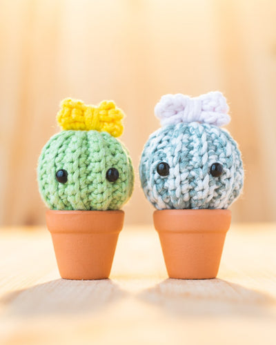 tiny rabbit hole thorny cactus succulent shrub plant cacti resilience pot amigurumi crochet workshop online singapore easy crochet hook pretty cute kawaii chinatown