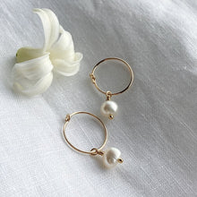 Load image into Gallery viewer, Bonds - Gold Filled Pearl Hoops