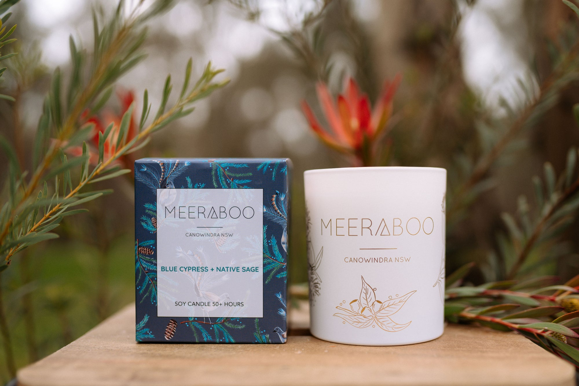 Behind the Scents / Blue Cypress + Native Sage