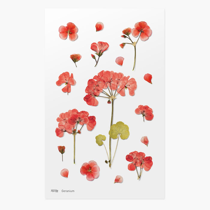 Appree | Pressed Geranium Flower Sticker Sheet | Script + Sea
