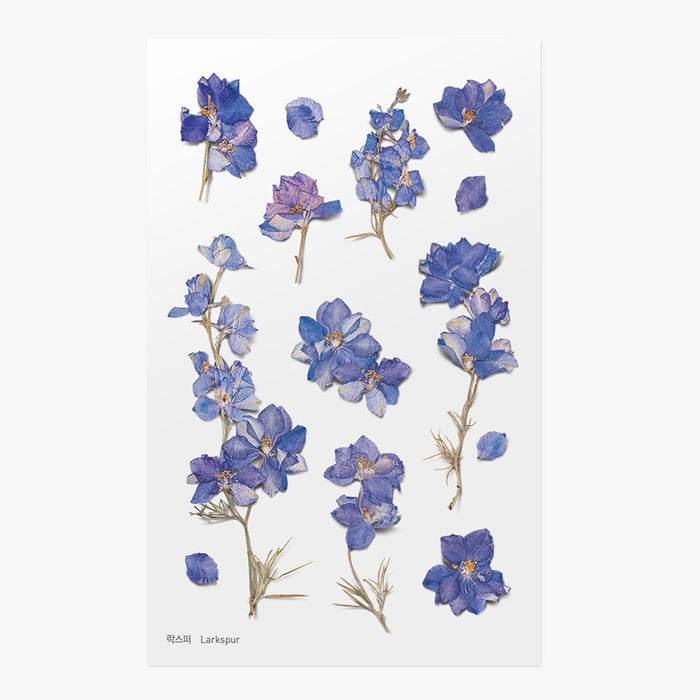 Appree | Pressed Larkspur Flower Sticker Sheet | Script + Sea