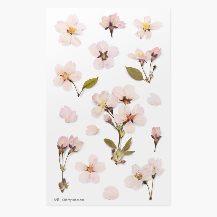 Appree Pressed Cherry Blossom Flower Sticker Sheet from Script + Sea featuring lovely light pink flowers.