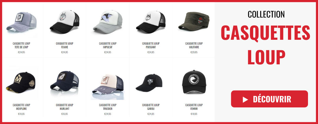 collection casquettes loup