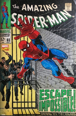 Spiderman - Escape Impossible