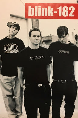 Blink 182 - B/W Group