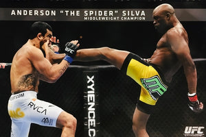 UFC - Anderson 'The Spider' Silva - Middleweight Champion