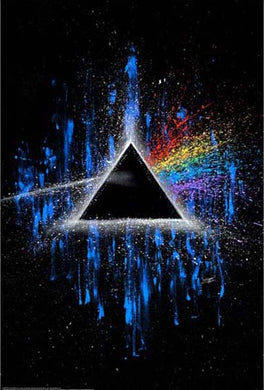Pink Floyd - Dark Side of the Moon Fishwick