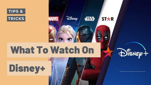 Don't know what to watch on Disney+ since WandaVision is over? We've got you.