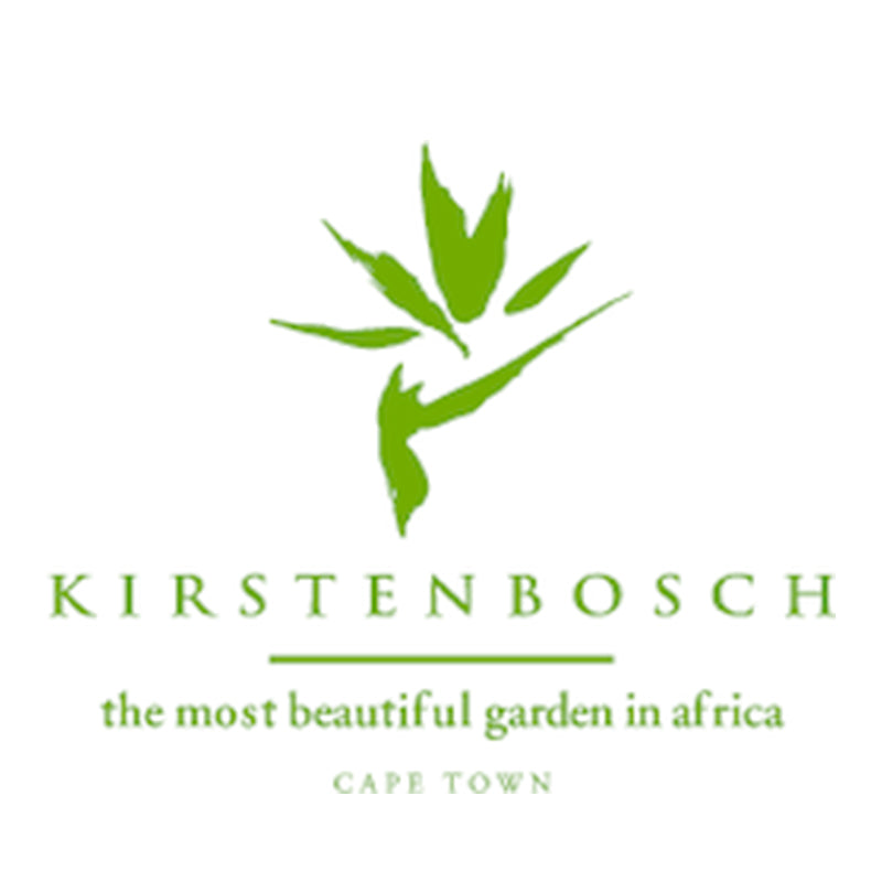 Kirstenbosch The Most Beautiful Garden In Africa