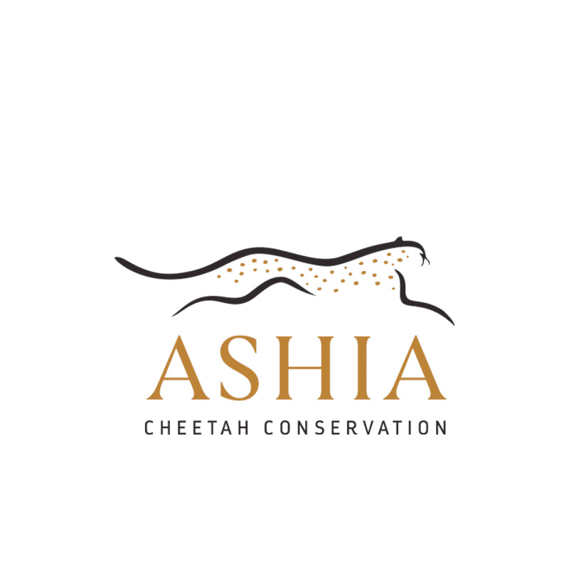 Ashia Cheetah Conservation