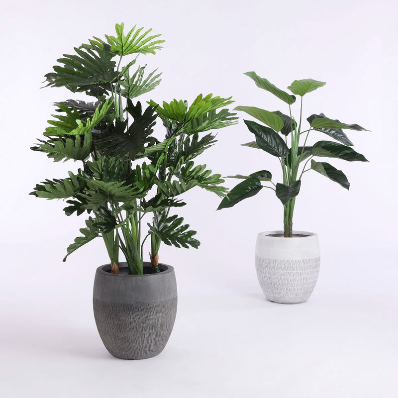 Mica Decorations philodendron in plastic pot maat in cm: 120 x 80
