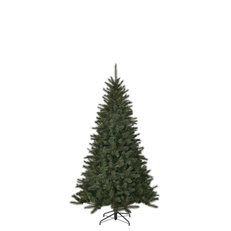 Black Box toronto kerstboom groen tips 511 maat in cm: 155 x 102