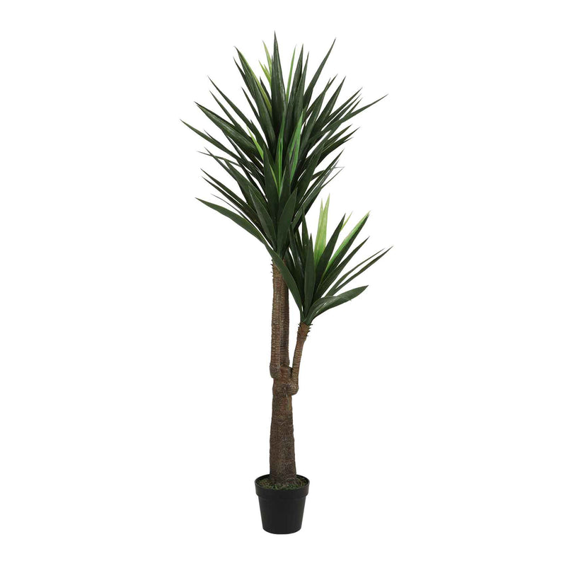 Mica Decorations yucca in plastic pot groen maat in cm: 100 x 60