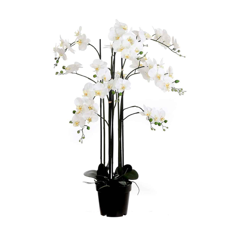 Mica Decorations orchidee in plastic pot creme maat in cm: 35 x 35 x 117