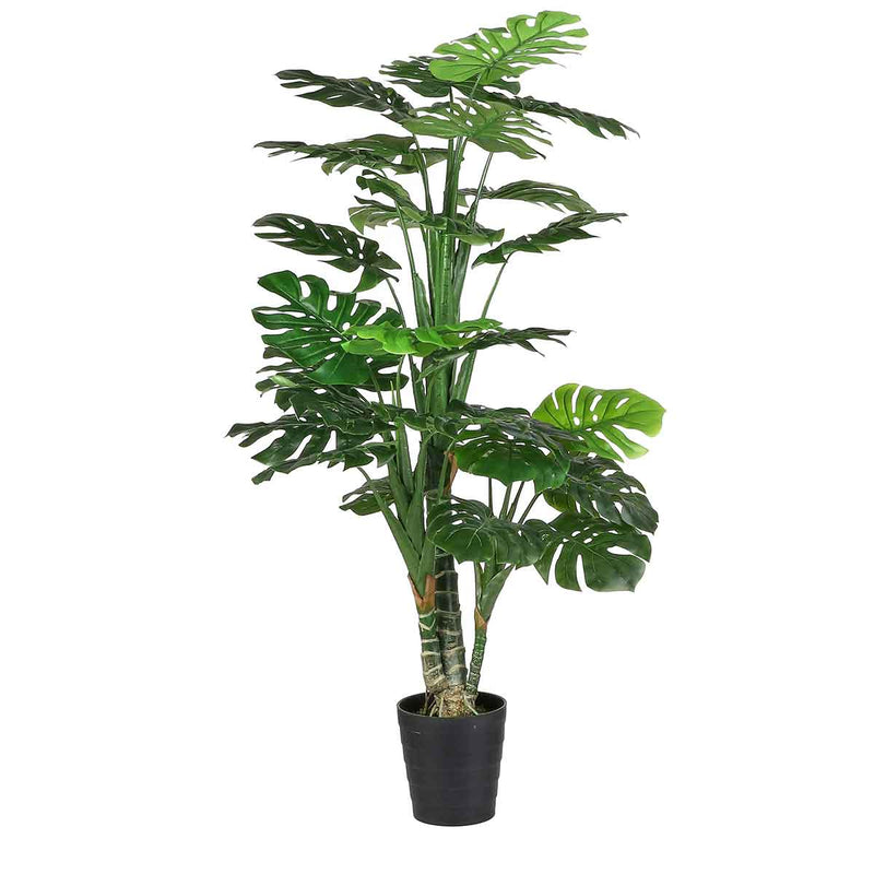 Mica Decorations monstera in plastic pot maat in cm: 160 x 80