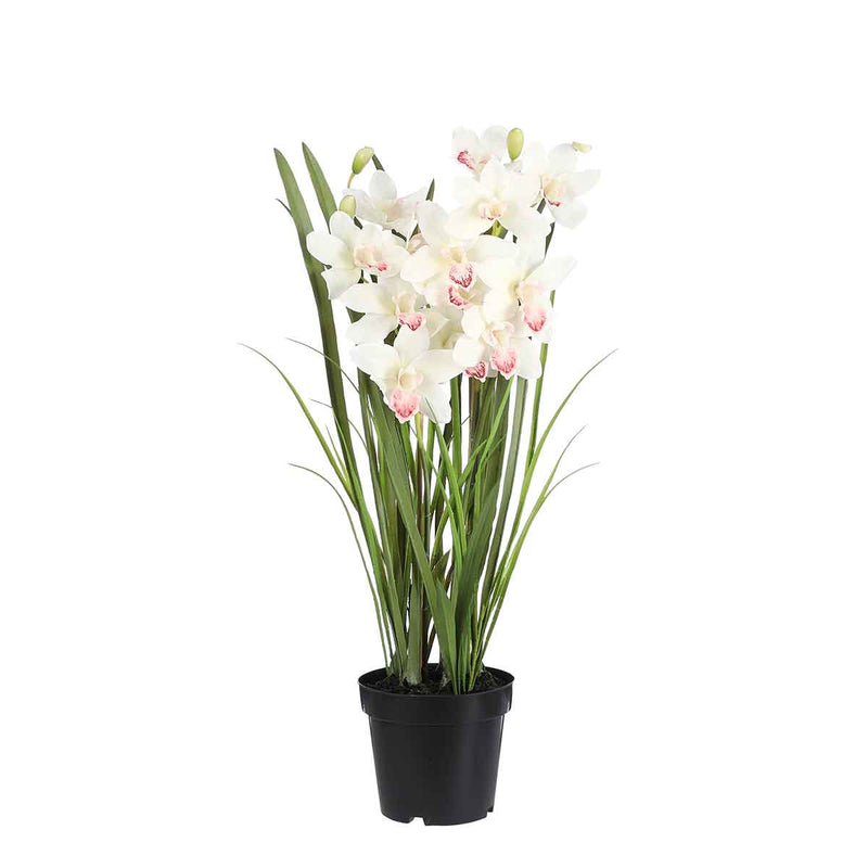Mica Decorations Cymbidium Kunstplant - H97 x Ø20 cm - Plastic Pot - Wit