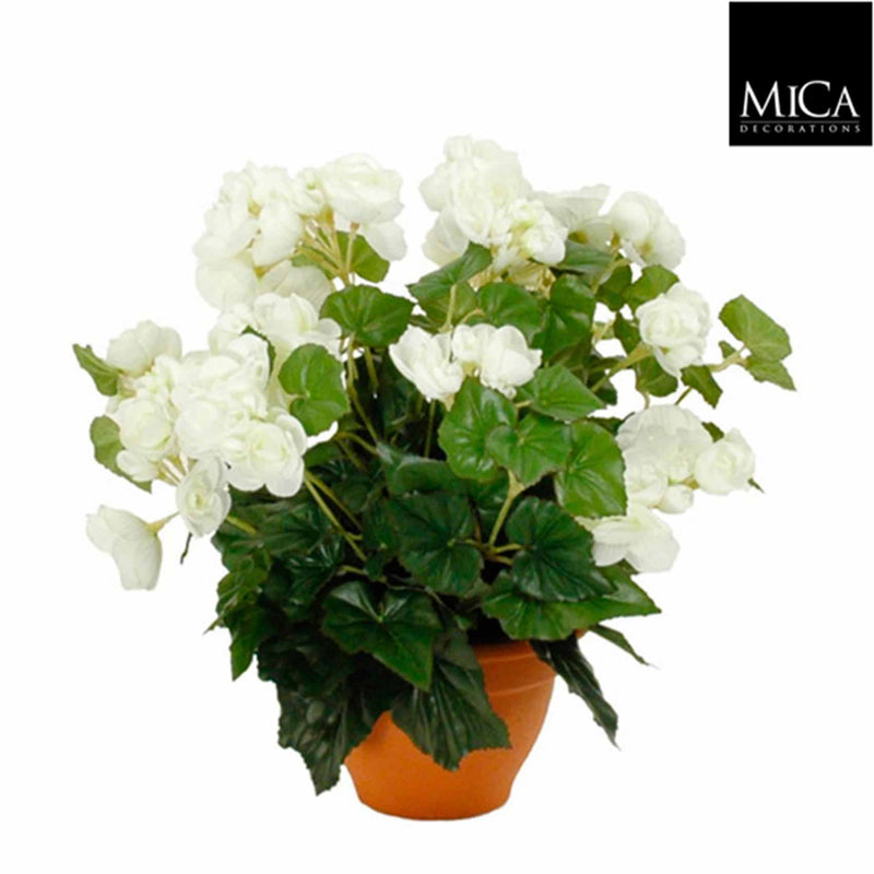 Mica Decorations begonia maat in cm: 37 x 35 wit in pot