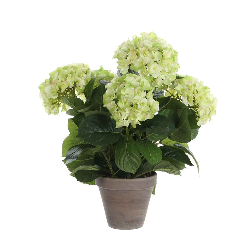 Mica Decorations hortensia creme in pot stan grijs d13,5 maat in cm: 45 x 45