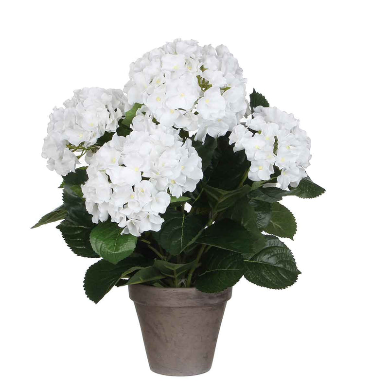Mica Decorations hortensia wit in pot stan grijs d13,5 maat in cm: 45 x 45
