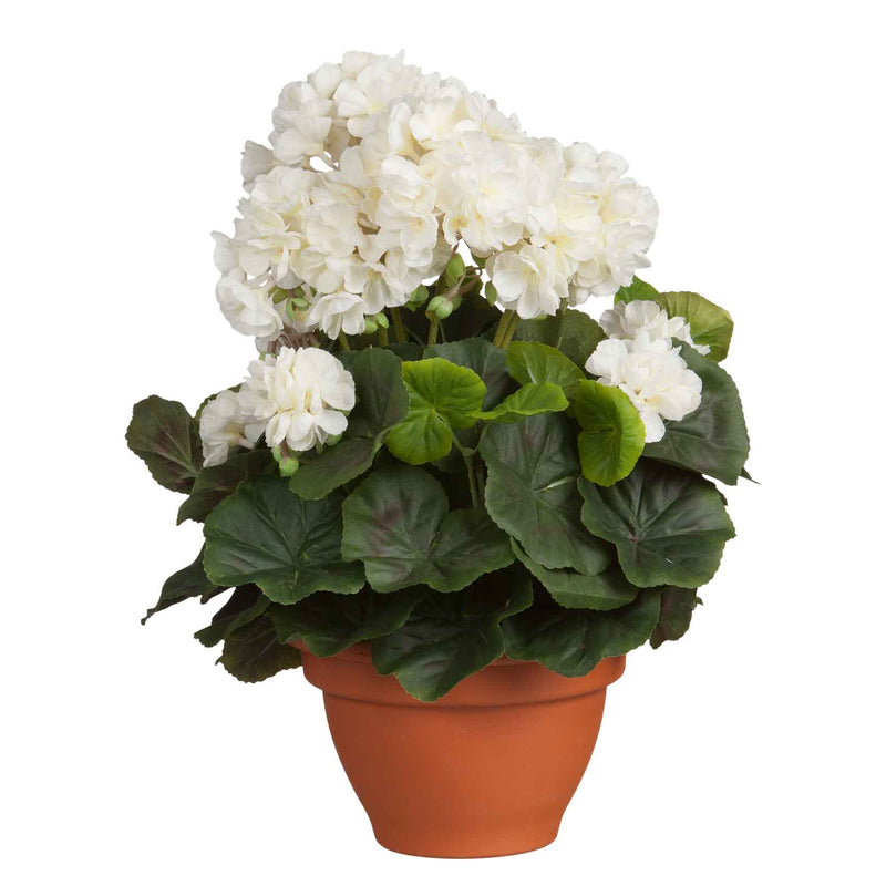 Mica Decorations geranium creme in pot campana terra dia in cm: 17,5 maat in cm: 38 x 30