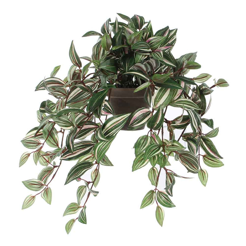 Mica Decorations tradescantia hangend groen in pot stan grijs maat in cm: 45 x 25