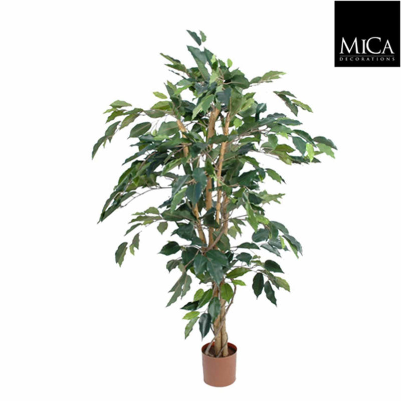 Mica Decorations ficus benjamina maat in cm: 105 x 60 groen in plastic pot
