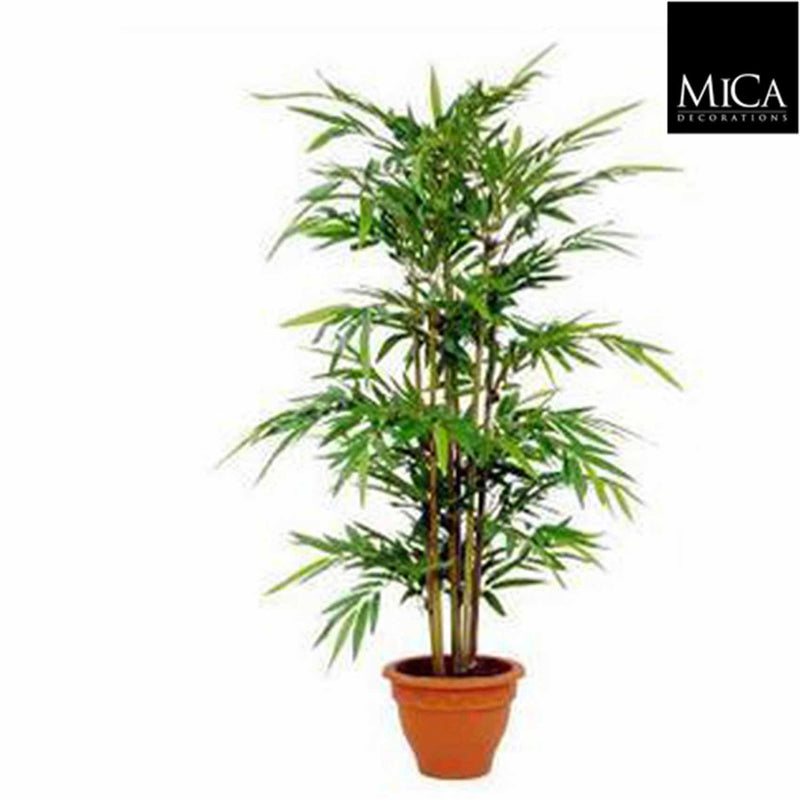 Mica Decorations bamboe maat in cm: 150 x 75 in pot