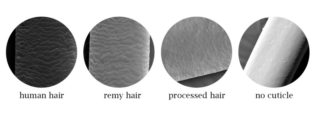 cuticle hair vs remy hair  vs processed hair vs non cuticle hair