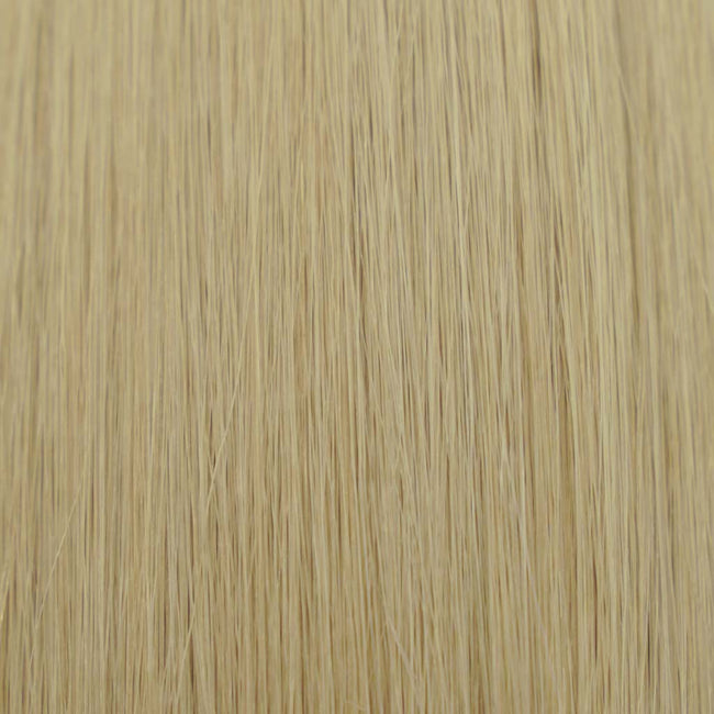Hairlaya Beige Blonde (#24G) Hand-Tied Wefts Hair Extensions Double Drawn color