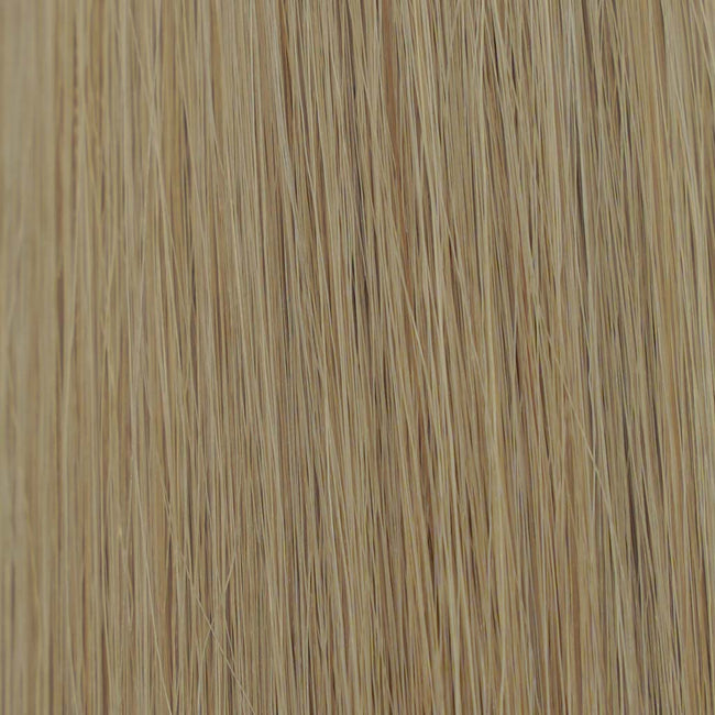 Dirty Blonde (#12) Straight Tape-In Hair Extensions Double Drawn Color