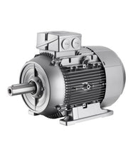 Load image into Gallery viewer, SIEMENS SIMOTICS GP/SD 1LE1/1PC1 Standard Motors