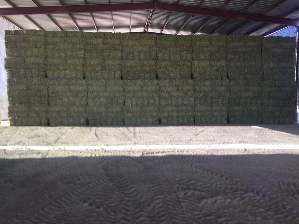 How Much Does a Bale of Hay Cost?