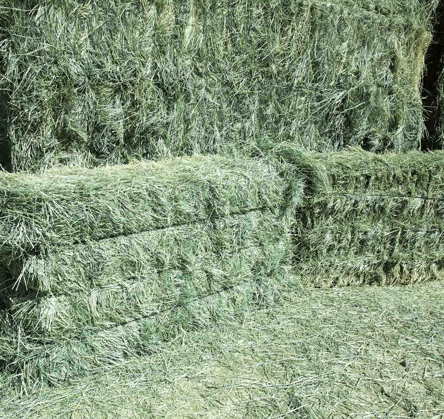 What is the difference between round and square bales?