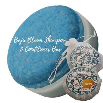 Baja Bloom shampoo and conditioner bars