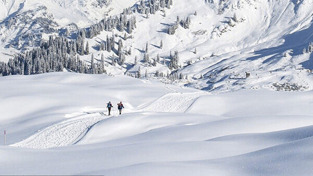 In the United States, 4 skiers die after being buried by an avalanche in the Rocky Mountains.