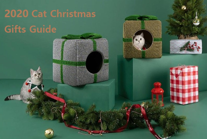 6 Best Christmas Gifts for Your Cat 2020