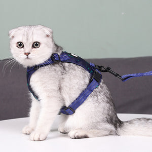 Leaf Pet Harness Vest & Leash